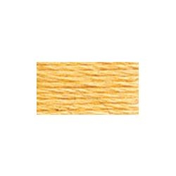 117-3855 LIght Autumn Gold - Six Strand DMC Floss