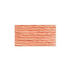 117-3824 Light Apricot - Six Strand DMC Floss